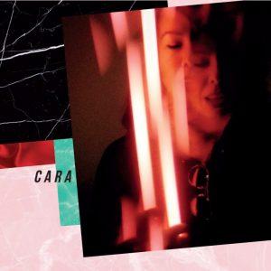 Cara-dlso-770x770