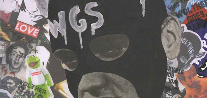WGS copertina