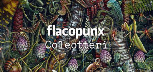 flacopunx